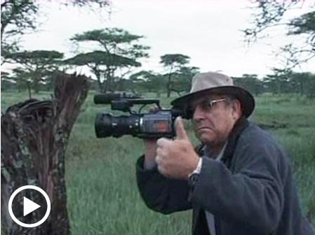 קירשנבאום באפריקה