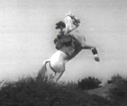 השריף מגבעות הוליווד
